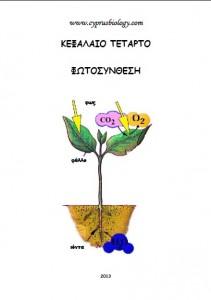 fylladioPhotosynthesis13