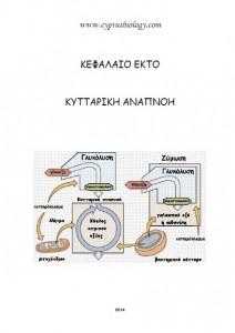 fylladio_kyttariki_anapnoi2014