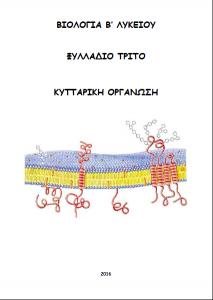 exofyllo_kyttarikiorganosib16