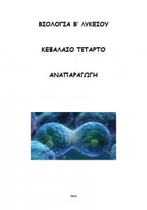 exofylloanaparagogib16